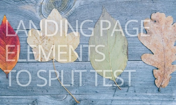Landing Page Copy Elements You Should Split Test
