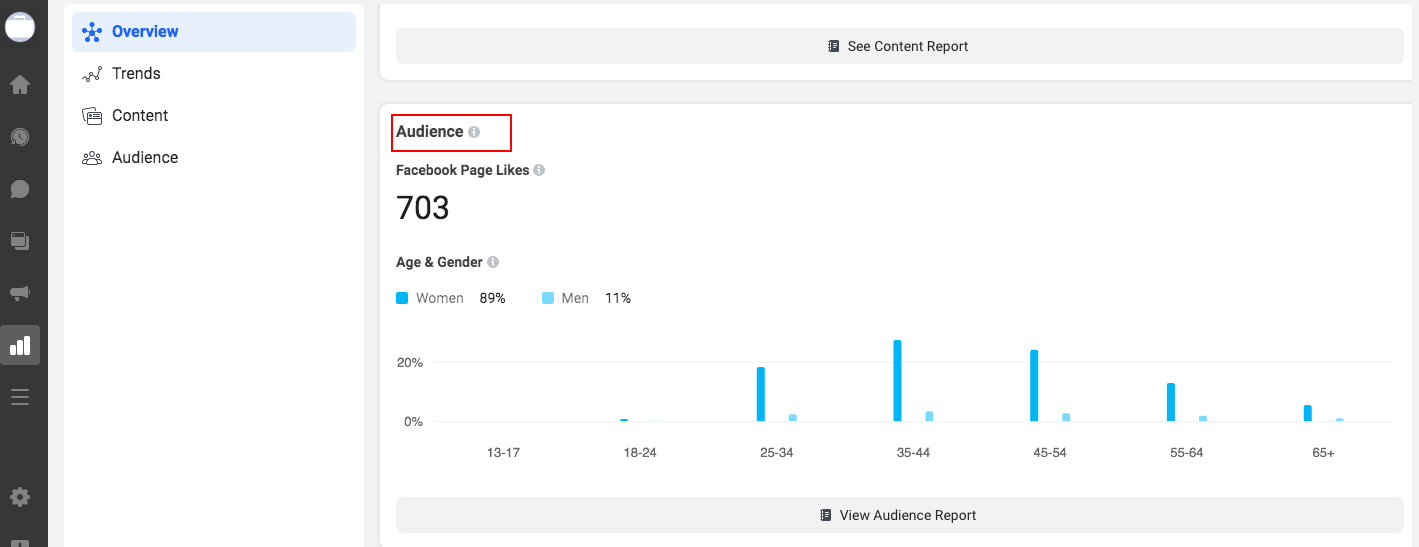 The Audience insights section